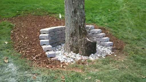 wall-tree-2