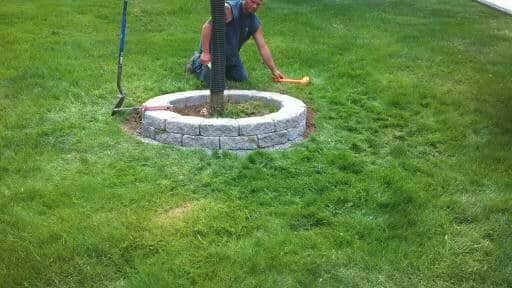 round-wall-tree